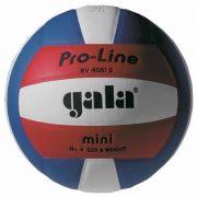 GALA Pro Line Mini libero röplabda, 4-es röplabda