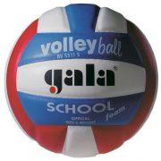 Gala School színes röplabda